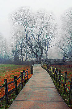 Foggy Forevers by Jessica Brawley