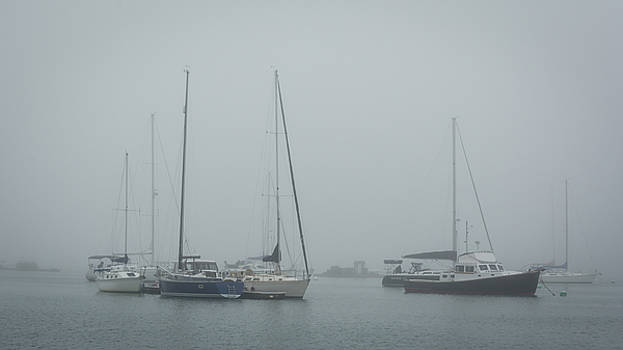 Foggy Freeport by Guy Whiteley
