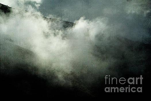 Foggy Grey Morning by Pamela Moran