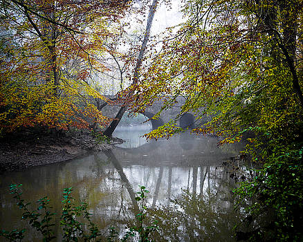 Foggy Jemison Park by Just Birmingham