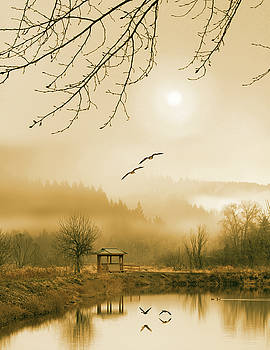 Foggy lake and three couple of birds by William Freebilly photography