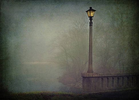 Foggy Lampost by William Schmid