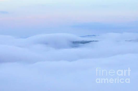 Foggy Layers by Kerri Farley