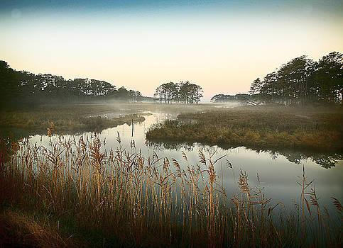 Foggy Marsh by George Lovelace