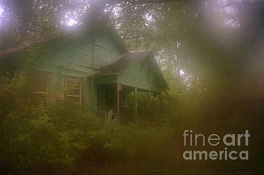 Foggy Memories by Lisa Holmgreen
