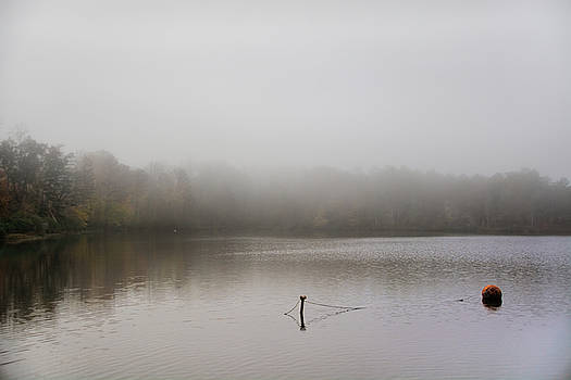 Foggy Morning At Lake LaJoie 110420158587 by WildBird Photographs