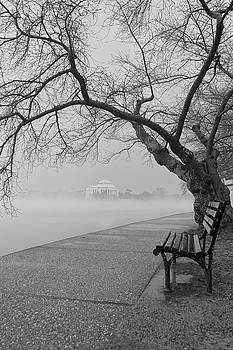 Foggy Morning at the Tidal Basin by David Posey