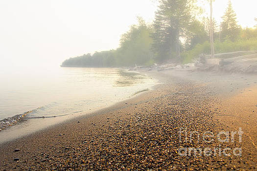 Foggy Morning by CJ Benson
