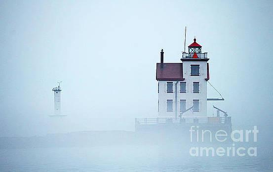 Foggy Morning by Debbie Parker