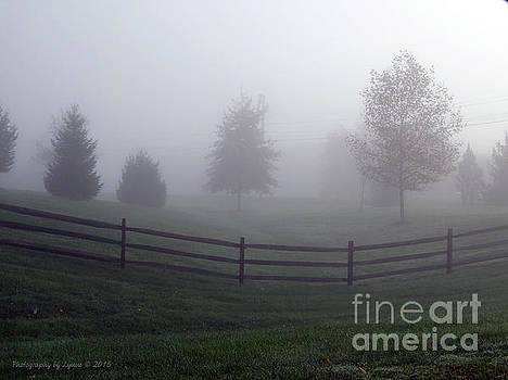 Gena Weiser - Foggy Morning