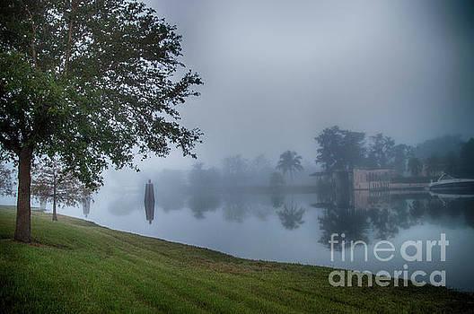 Foggy Morning in Alva Florida by Judy Hall-Folde