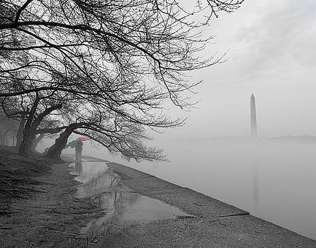 Foggy Morning in DC by David Posey
