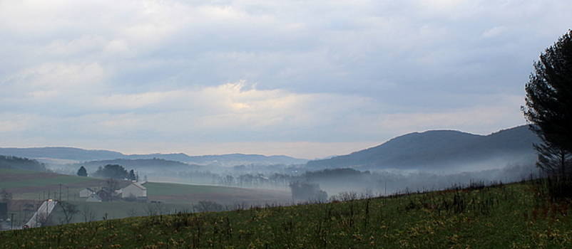 Foggy Morning in the Valley by Liz Allyn