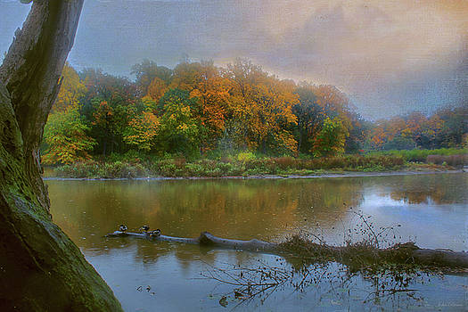 Foggy Morning by John Rivera