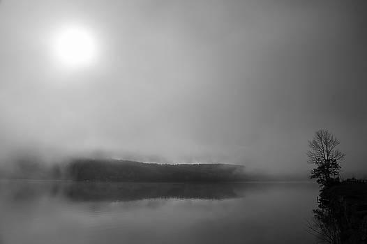Foggy Morning Lake Reflections by Brooke T Ryan