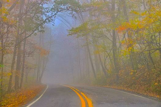 Foggy Morning on the Arkansas Scenic Pig Trail Bypass by Carolyn Wright