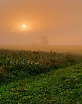 Foggy Morning on the Farm by Ron  McGinnis