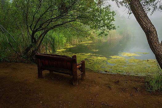 Rick Strobaugh - Foggy Morning on the Pond