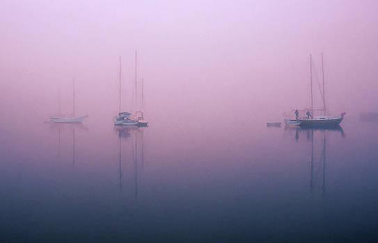 Foggy Morning on the  Sassafras River by Richard Goldman