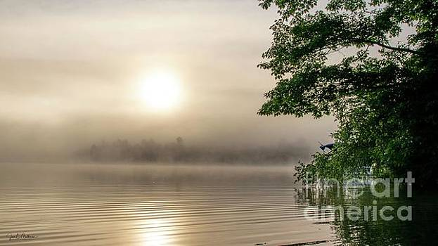 Foggy Morning on Woodbury Pond II by Jan Mulherin