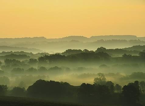 Foggy Morning Sunrise by Lori Frisch
