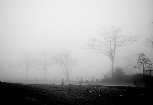 Erin Thomas - Foggy Mountain
