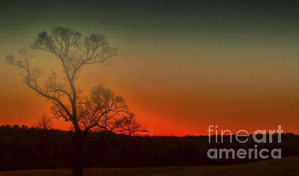 Dave Bosse - Foggy Muted Sunrise
