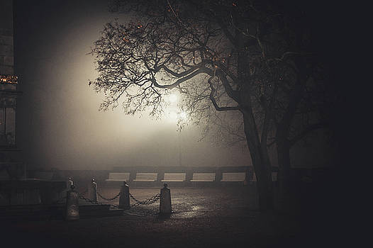 Foggy Night In Brno. Denis Gardens by Jenny Rainbow