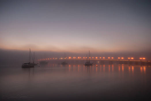 Foggy Nights of Lights by Stacey Sather