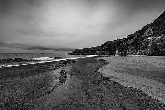 Point Reyes Foggy Beach by Daniel Danzig