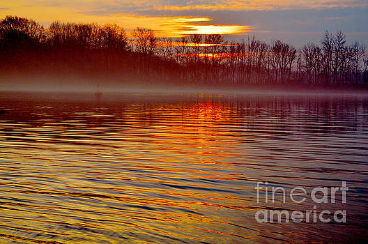 Robyn King - Foggy Sunrise At The Delaware River