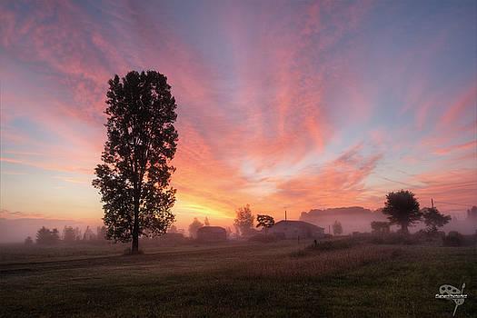 Foggy Sunrise by Brian Fisher