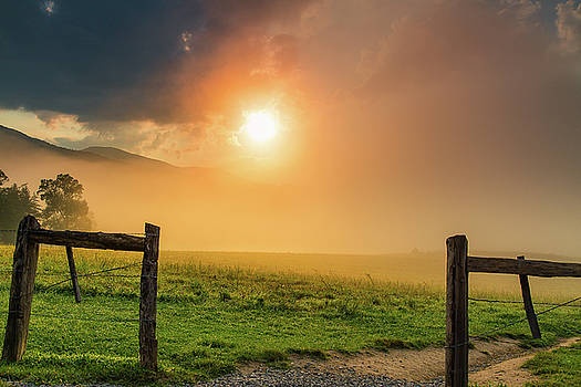 Foggy Sunrise by Jackie Novak