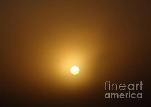 Foggy Sunrise by Joseph Baril