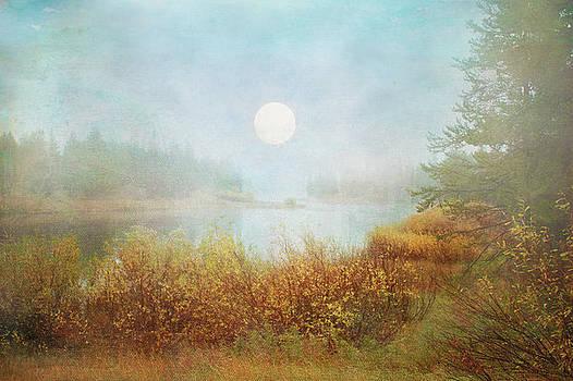 Foggy Sunrise  by Ramona Murdock