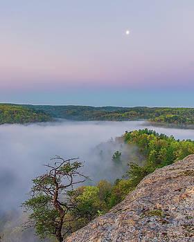 Foggy valley by Ulrich Burkhalter
