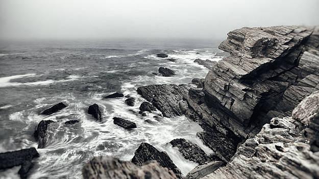 Foggy Washout Coastline by Sleepy Weasel