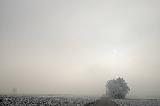 Martin Stankewitz - foggy winter morning big sky