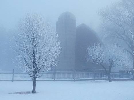 Foggy Winter Morning by Lori Frisch