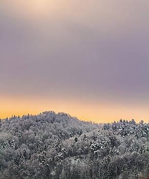Vyacheslav Isaev - Foggy winter sunrise.