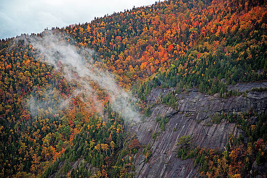 Toby McGuire - Foliage Covered Mountainside from Giant Mountain Keene Valley Adirondacks