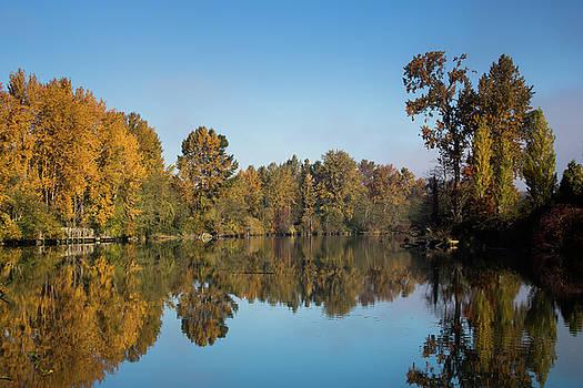 John Clark - Foliage River