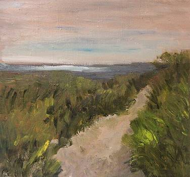 Follow the Path by Michael Helfen