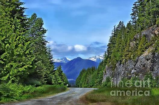 Follow The Road by Gail Bridger