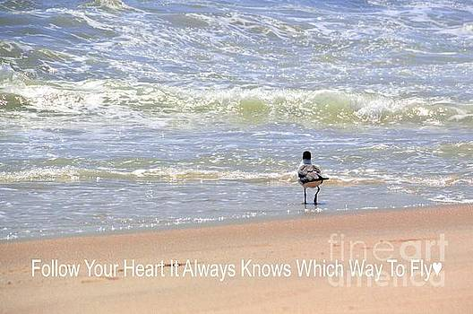 Robyn King - Follow Your Heart Inspirational Art