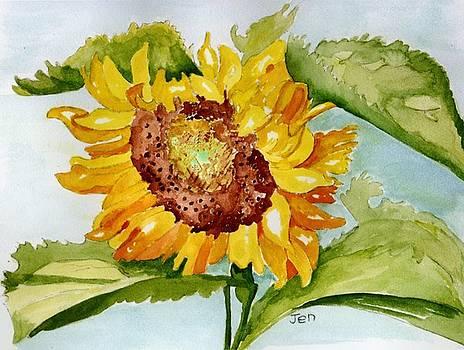 Following the SUN by Ann Gordon