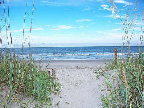 Folly Beach II by Melanie Snipes