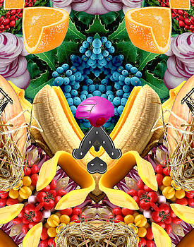Food Collage 2 by Bruce Wood