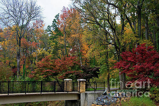 Jill Lang - Foot Bridge in the Fall