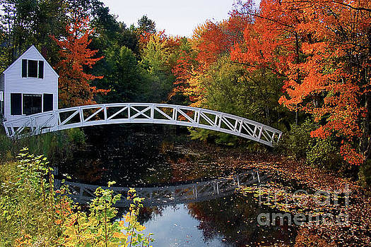 Foot Bridge Over a Pond by George Oze